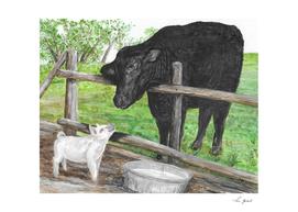 Albert Ein-swine and Cow Pie