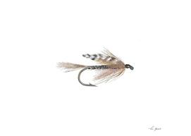 Adams Wet Fly