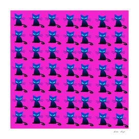 1001 Little Black Cats