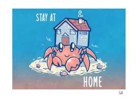 Stay at Home Hermit Crab