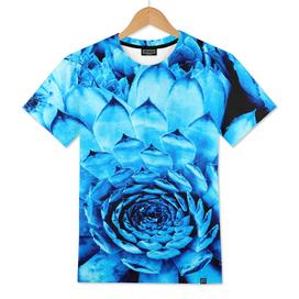 BLUE SERIES Succulent, Blue wall-art, Nature, Photography