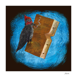 Bookpecker