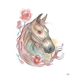 Horse & Roses