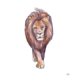 Watercolor Lion Art