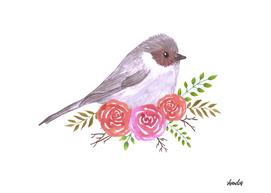 Bushtit and rose flower plant watercolor