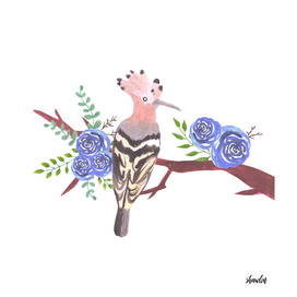 Hoopoe bird on a floral branch with blue roses