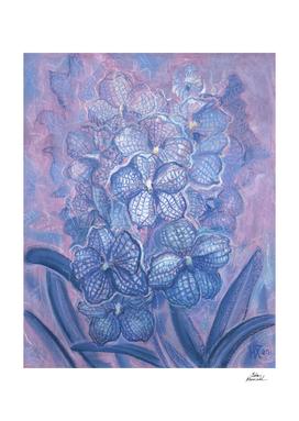 Blue Orchid, Checkered Vanda, Garden Flowers, Floral Art