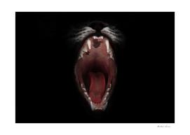 open greedy feline jaws