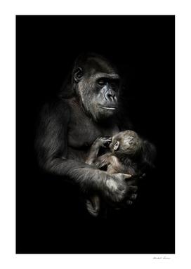 Gorilla monkey mother