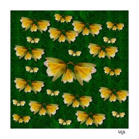 free frangipani in plumeria freedom