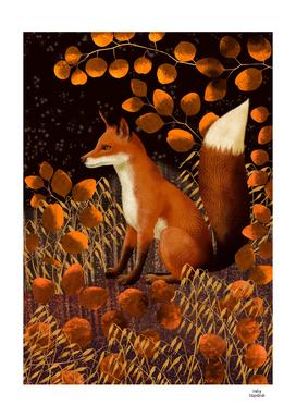 Fox under a Starry Night