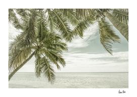 FLORIDA Oceanview | Vintage