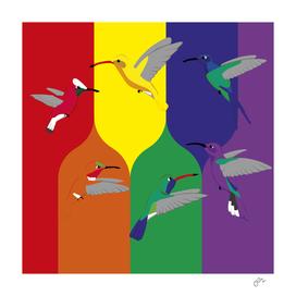 Pride hummingbirds