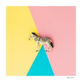 Wild plastic zebra