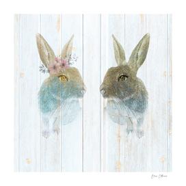 Rabbits Spring Fever