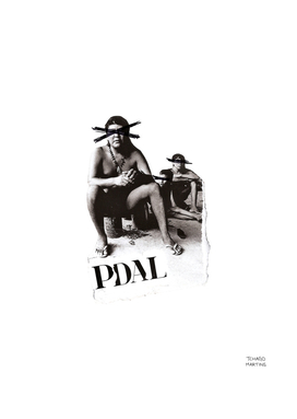 PDAL (For days outdoors)