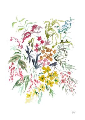 Botanical wildflowers watercolor