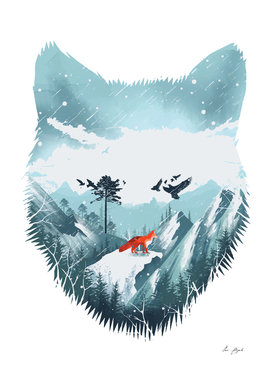 Red Fox on the Wild Winter