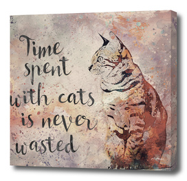 Time spend with Cats