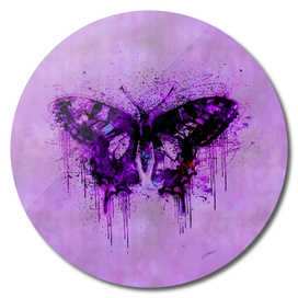Crazy Butterfly
