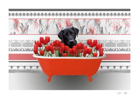 badewanne_tulips_labrador_black