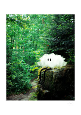 Coy The Cloud: Enjoying Nature