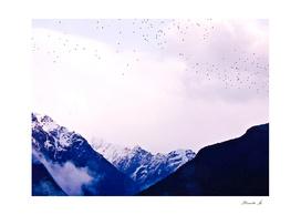 Mountains landscape lilacs