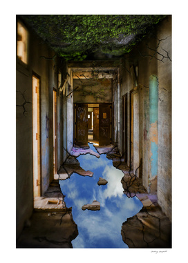 The Upside Down Asylum