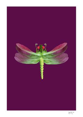 Dragonfly (purple)