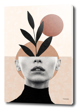 Abstract geometric floral beauty