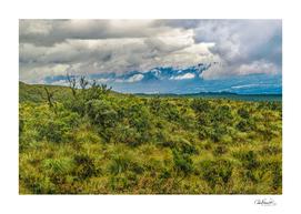 Landscape Scene Cotopaxi National Park, Ecuador
