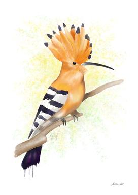 Watercolor Hoopoe Bird