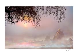 Eastern Dawn