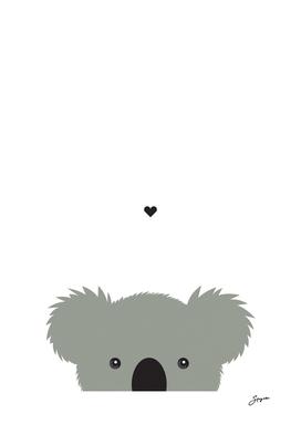 Tiny Koala