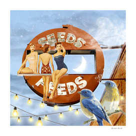 Summer Eve At The Seeds & Feeds