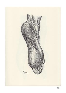 Ballpen Feet 1