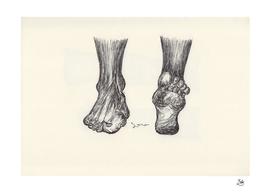 Ballpen Feet 5