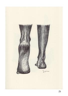 Ballpen Feet 6