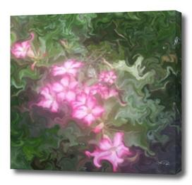 Pretty Little Flowers