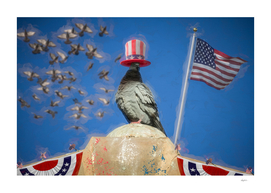 Pigeon Patriotism