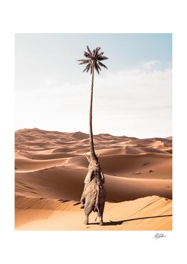Palmtreelephant (palmtree + elephant)