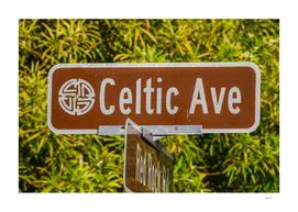 Celtic Avenue