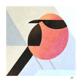 Red_Bird