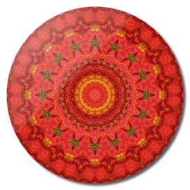 Lilies III Mandala