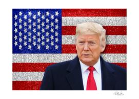 Trump President Sticker Design
