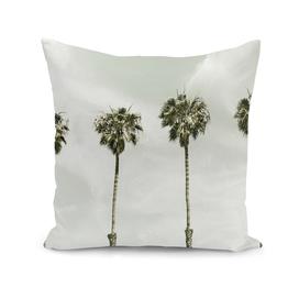 Coastal palm trees | Vintage