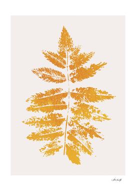 Oak Leaf Print