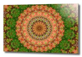 Foliage 3 Mandala