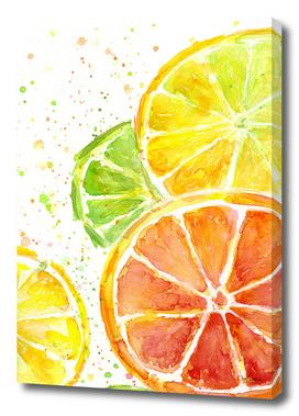 Juicy Citrus Watercolor