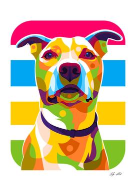The Colorful Pitbull Retriever Dog